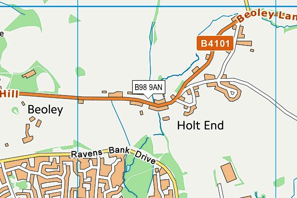 Beoley First School map (B98 9AN) - OS VectorMap District (Ordnance Survey)