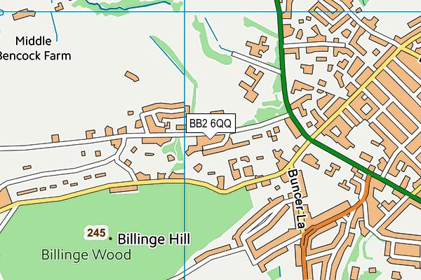 The Olive School Blackburn map (BB2 6QQ) - OS VectorMap District (Ordnance Survey)