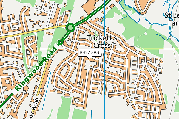 BH22 8AS map - OS VectorMap District (Ordnance Survey)