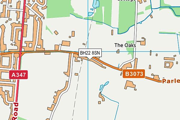 BH22 8SN map - OS VectorMap District (Ordnance Survey)