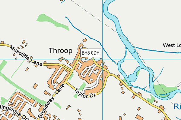 BH8 0DH map - OS VectorMap District (Ordnance Survey)