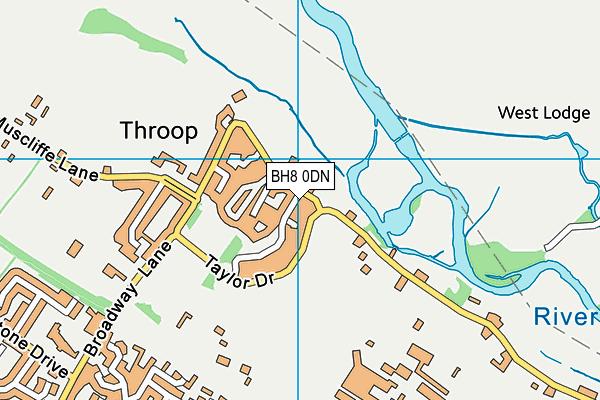 BH8 0DN map - OS VectorMap District (Ordnance Survey)