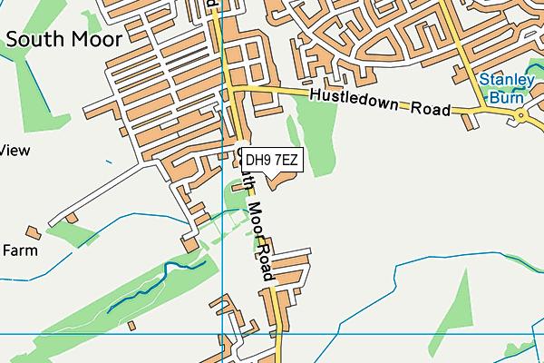 Greenland Community Primary School map (DH9 7EZ) - OS VectorMap District (Ordnance Survey)