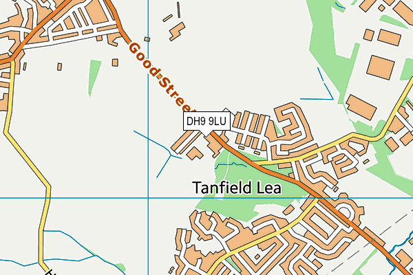 Tanfield Lea Community Primary School map (DH9 9LU) - OS VectorMap District (Ordnance Survey)