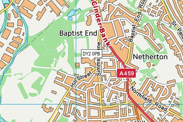 The Link Academy map (DY2 0PB) - OS VectorMap District (Ordnance Survey)