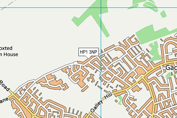 HP1 3NP map - OS VectorMap District (Ordnance Survey)
