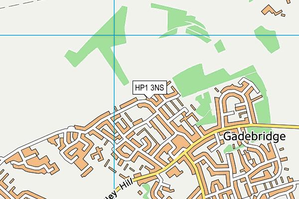HP1 3NS map - OS VectorMap District (Ordnance Survey)