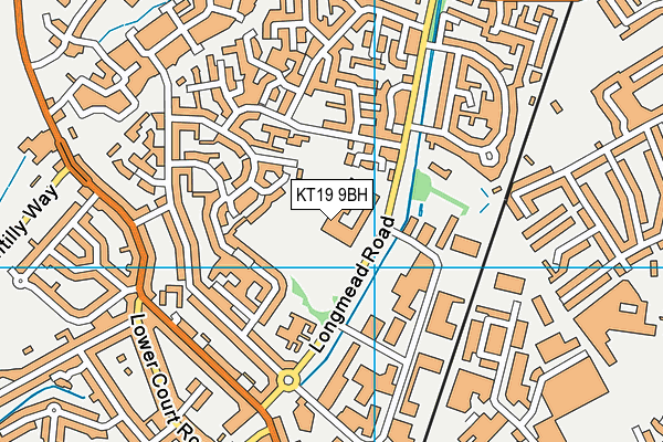 Blenheim High School map (KT19 9BH) - OS VectorMap District (Ordnance Survey)