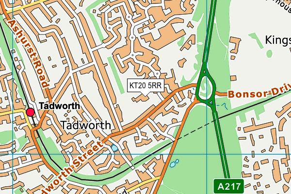 Tadworth Primary School map (KT20 5RR) - OS VectorMap District (Ordnance Survey)