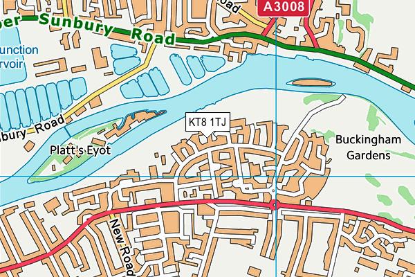 KT8 1TJ map - OS VectorMap District (Ordnance Survey)