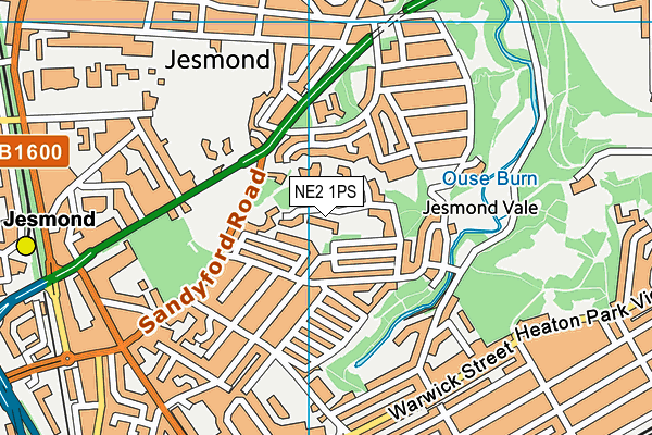 St Catherine's RC Primary School map (NE2 1PS) - OS VectorMap District (Ordnance Survey)