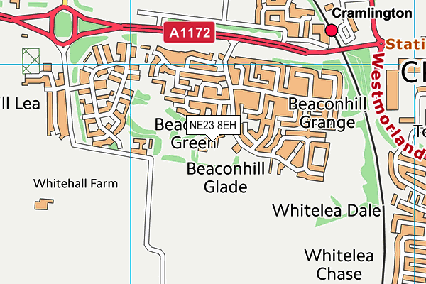 Beaconhill Community Primary School map (NE23 8EH) - OS VectorMap District (Ordnance Survey)