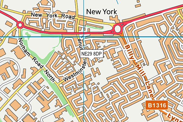 New York Primary School map (NE29 8DP) - OS VectorMap District (Ordnance Survey)