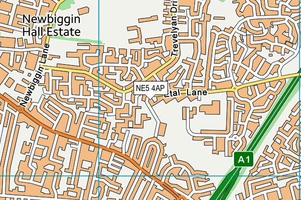 Farne Primary School map (NE5 4AP) - OS VectorMap District (Ordnance Survey)