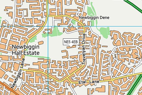 Cheviot Primary School map (NE5 4EB) - OS VectorMap District (Ordnance Survey)