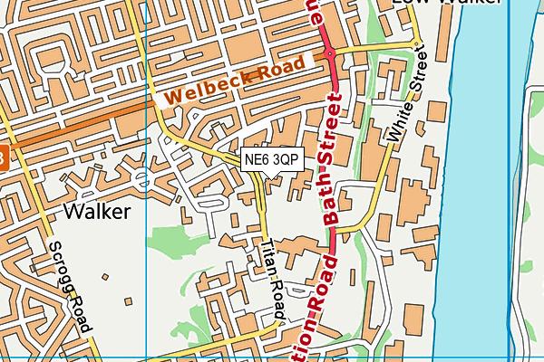 Tyneview Primary School map (NE6 3QP) - OS VectorMap District (Ordnance Survey)
