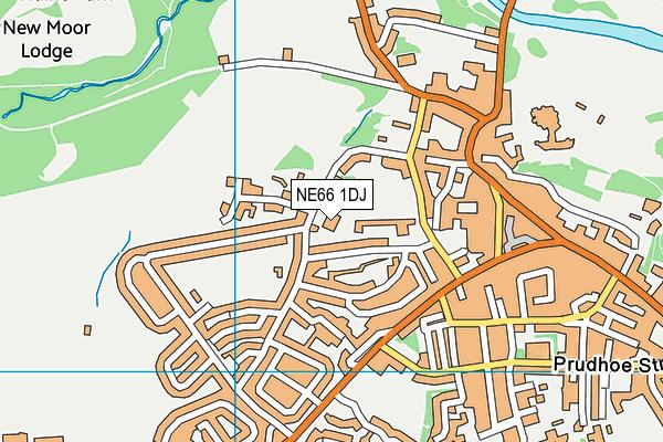 St Michael's Church of England Primary School map (NE66 1DJ) - OS VectorMap District (Ordnance Survey)