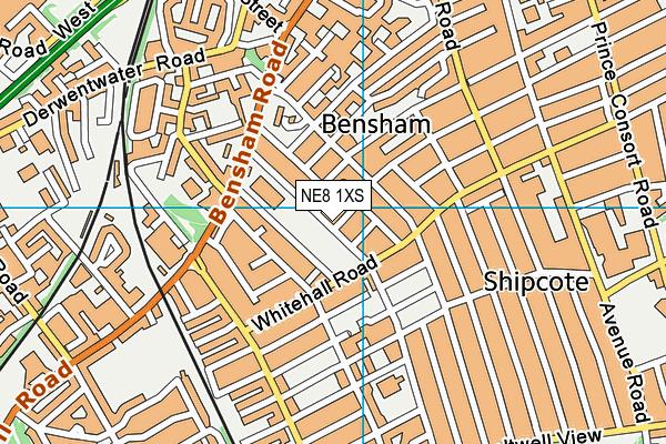 Brighton Avenue Primary School map (NE8 1XS) - OS VectorMap District (Ordnance Survey)