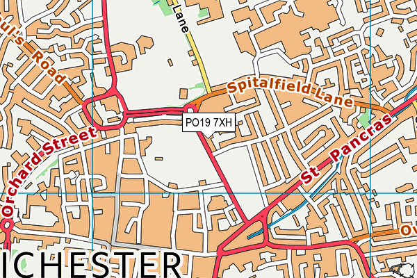 New Park Road map (PO19 7XH) - OS VectorMap District (Ordnance Survey)