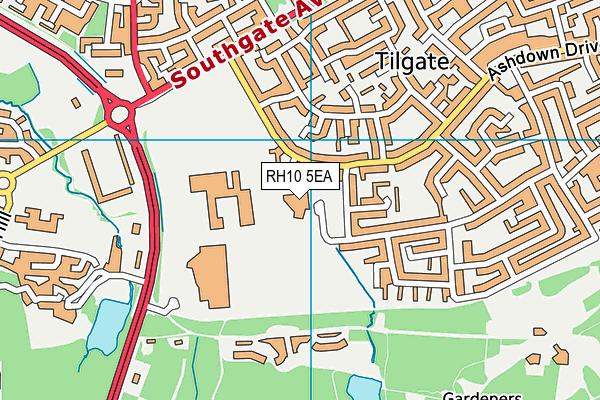 Desmond Anderson Primary Academy map (RH10 5EA) - OS VectorMap District (Ordnance Survey)