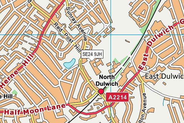 The Charter School North Dulwich map (SE24 9JH) - OS VectorMap District (Ordnance Survey)