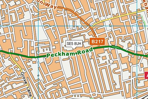 Oliver Goldsmith Primary School map (SE5 8UH) - OS VectorMap District (Ordnance Survey)