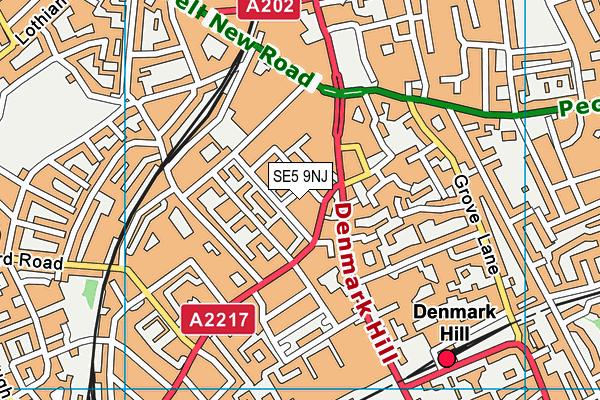 SE5 9NJ map - OS VectorMap District (Ordnance Survey)