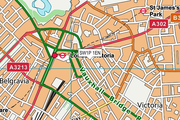 SW1P 1EN map - OS VectorMap District (Ordnance Survey)