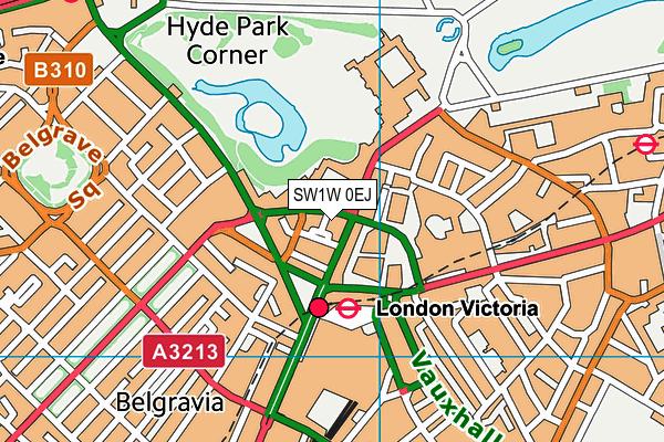 SW1W 0EJ map - OS VectorMap District (Ordnance Survey)