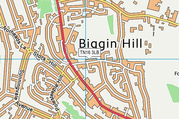 Biggin Hill Memorial Library map (TN16 3LB) - OS VectorMap District (Ordnance Survey)