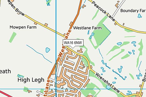 High Legh Primary School map (WA16 6NW) - OS VectorMap District (Ordnance Survey)