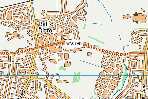 Ditton Primary School map (WA8 7HD) - OS VectorMap District (Ordnance Survey)
