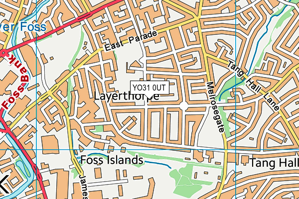 Tang Hall Primary Academy map (YO31 0UT) - OS VectorMap District (Ordnance Survey)