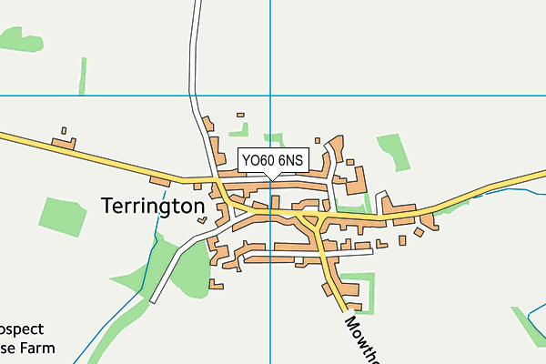 Terrington Church of England Voluntary Aided Primary School map (YO60 6NS) - OS VectorMap District (Ordnance Survey)