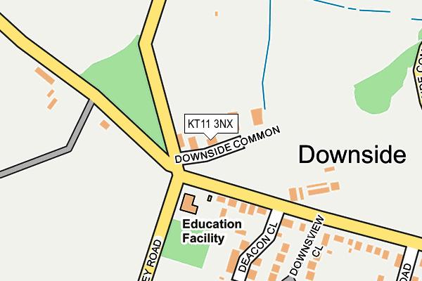 KT11 3NX map - OS OpenMap – Local (Ordnance Survey)