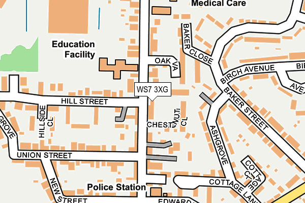 WS7 3XG map - OS OpenMap – Local (Ordnance Survey)